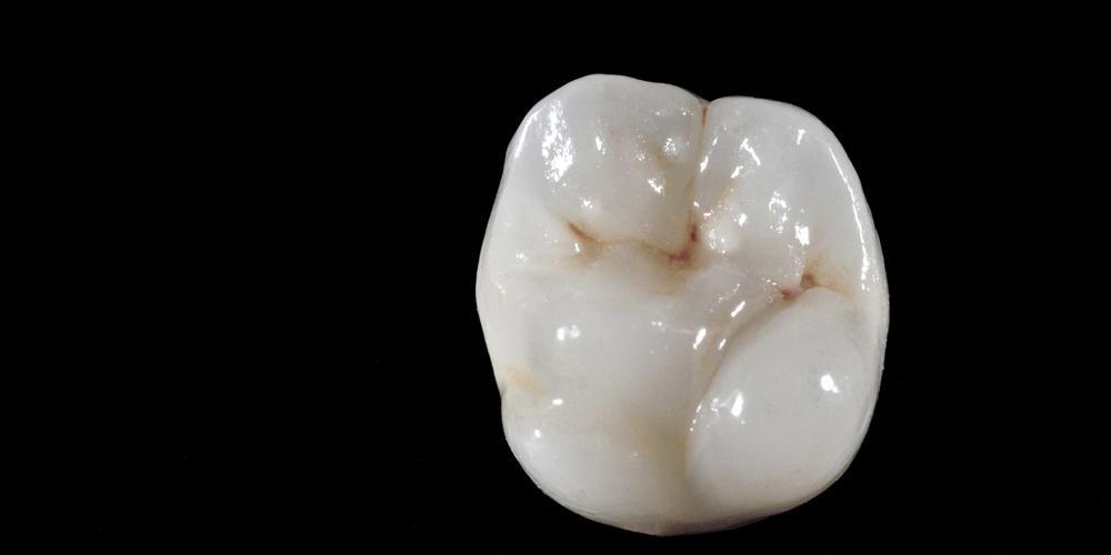 dentallabor-002_Startseite_1000x500